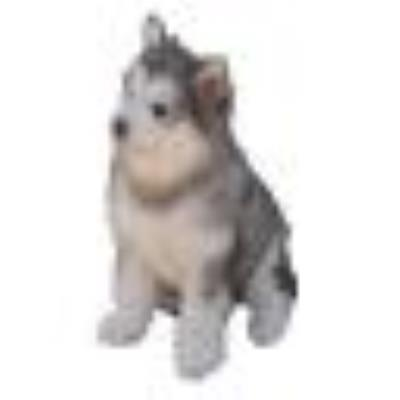 Perro 02