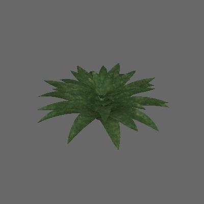Bromélia 01