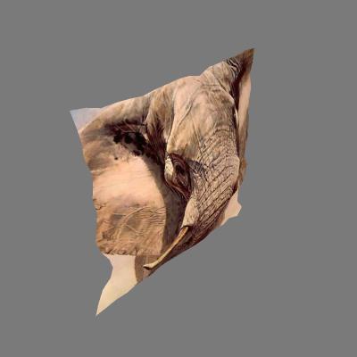 Almofada Africana