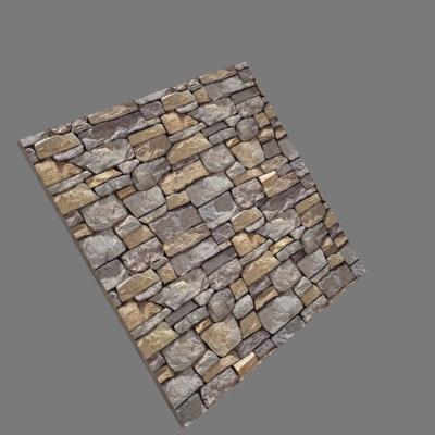 Piedra 11
