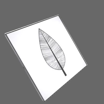 quadro folha