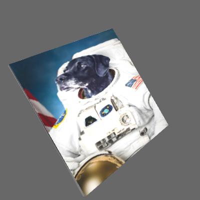 Quadro Cachorro Astronauta
